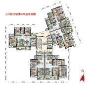 保利林语3室2厅2卫82--123平方米户型图