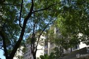 绿地世纪城外景图