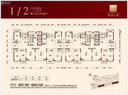 金港广场194--240平方米户型图