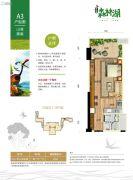 碧桂园森林湖1室1厅1卫60平方米户型图