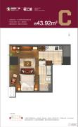 星颐广场1室1厅1卫60平方米户型图
