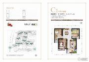 源昌・君悦山2室2厅1卫96--97平方米户型图