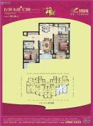 碧桂园凤凰城2室2厅1卫93平方米户型图