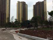 张坝天府花园外景图
