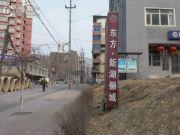 东方・新湖俪城外景图