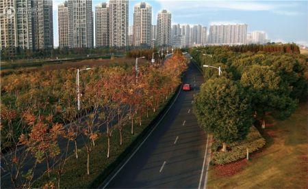 杭州下沙二小报名_宋都晨光国际-楼盘详情-杭州腾讯房产